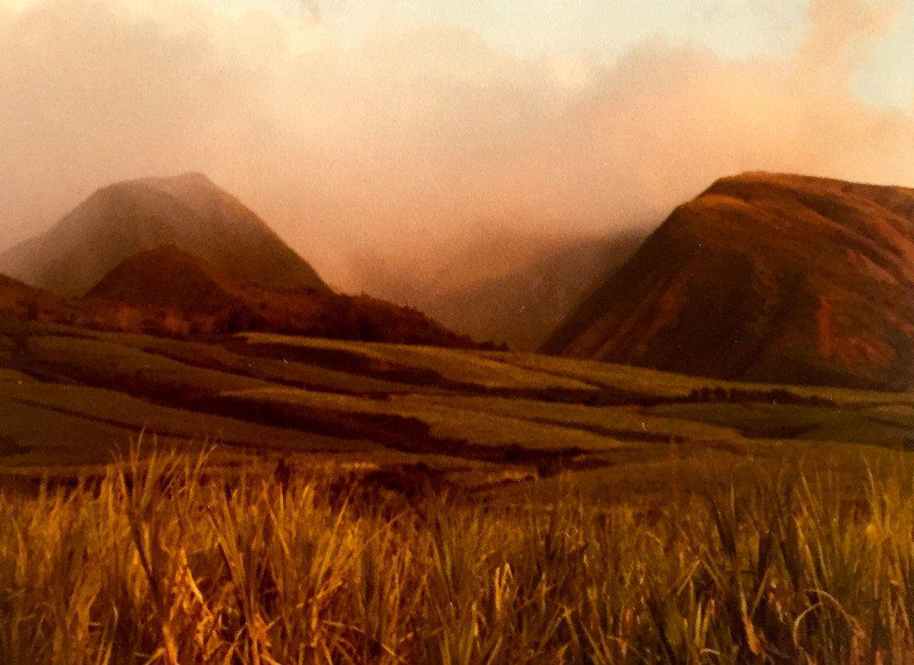 The view behind my Lahaina cottage of the West Maui Mountains. This was when they still farmed sugar cane.